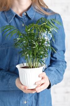 Giovane donna che coltiva le piante domestiche