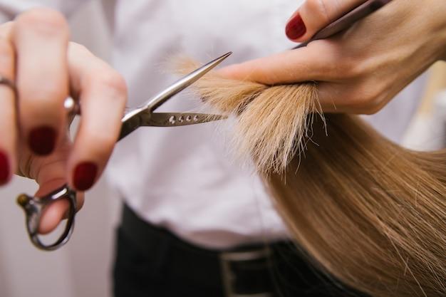 Una giovane donna si taglia i capelli con le forbici. prodotti professionali per la cura dei capelli.