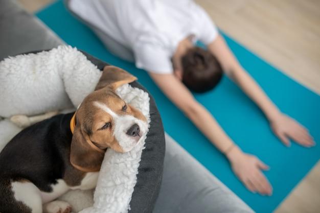 Una giovane donna che si esercita a casa mentre il suo cucciolo dorme in un posto per cani