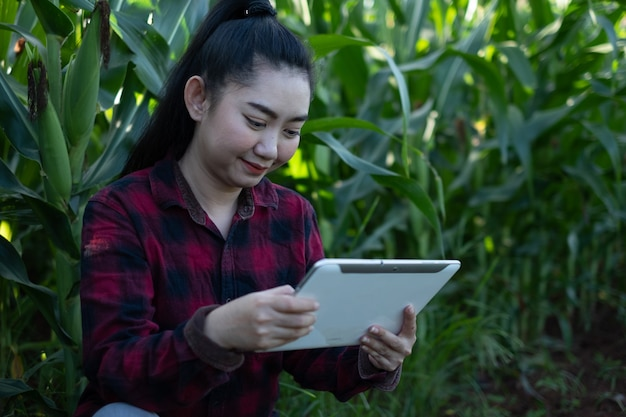 La giovane agricoltrice usa il tablet osservando alcuni grafici di mais nel giardino