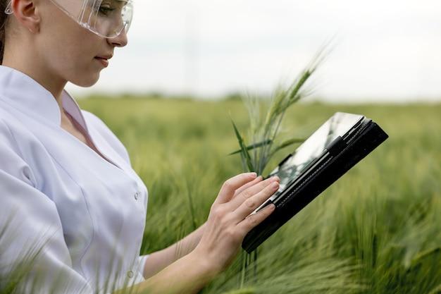 La giovane agricoltrice che indossa l'accappatoio bianco sta controllando i progressi del raccolto su un tablet nel campo di grano verde. cresce un nuovo raccolto di grano. concetto agricolo e di fattoria.
