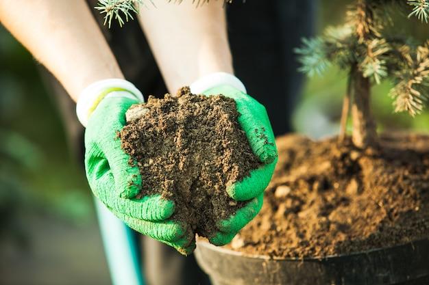 Giovane donna-giardiniere che trapianta una pianta in un terreno fertile