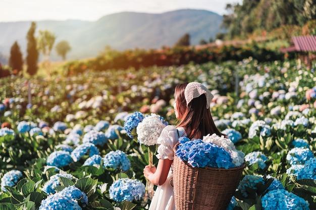 Viaggiatore della giovane donna che si rilassa e che gode con il giacimento di fiore di ortensie in fiore