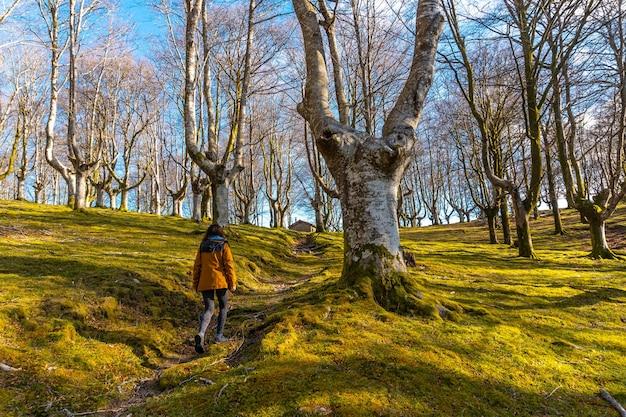 Una giovane donna sul sentiero di trekking nella faggeta di oianleku, nella città di oiartzun, gipuzkoa. paesi baschi. spagna