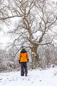 Una giovane donna con una giacca gialla sotto un bellissimo albero gigante congelato dal freddo invernale. neve nella città di opakua vicino a vitoria