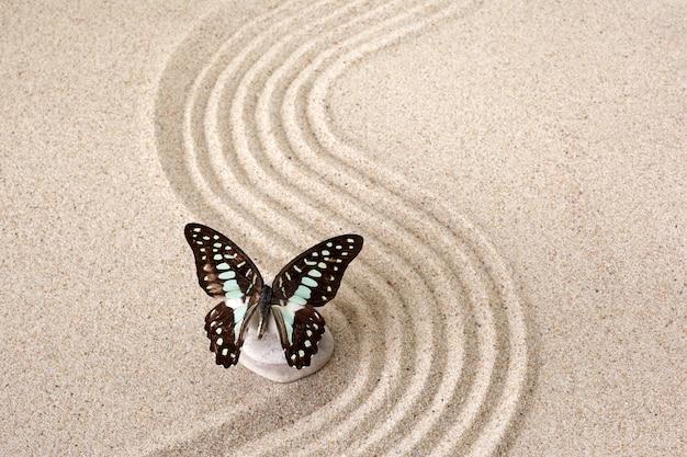 Pietra da meditazione da giardino zen per concentrazione e relax con farfalla. vista dall'alto