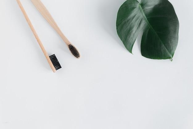 Concetto di rifiuti zero. lo spazzolino da denti naturale del bambù di eco con i monstera va sulla vista superiore del fondo bianco copi lo spazio