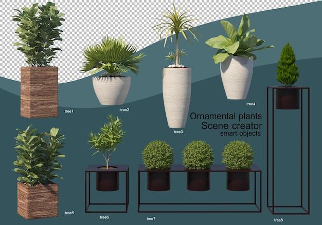 Visualizzazione 3d di vari tipi di composizioni ornamentali