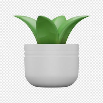 Rendering 3d isolato dell'icona della pianta decorativa psd