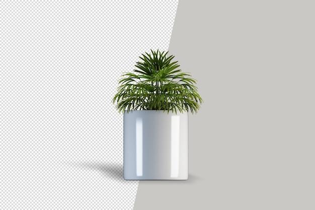3d render albero pennello isolato