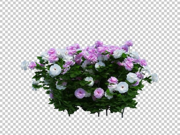 Rendering 3d di albero pennello con fiori isolati