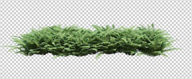 3d rendono il gruppo di piante isolate