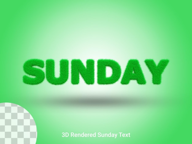 Testo dell'erba della domenica renderizzato in 3d