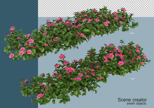Rendering 3d di bellissime piante in vari angoli isolati