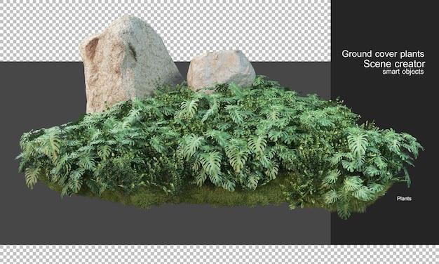 Rendering 3d di piante di copertura e grandi rocce