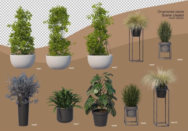 Rendering 3d di disposizione albero decorativo Psd Premium