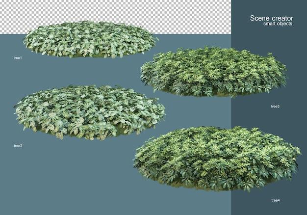 Rendering 3d la disposizione dei campi di fiori Psd Premium