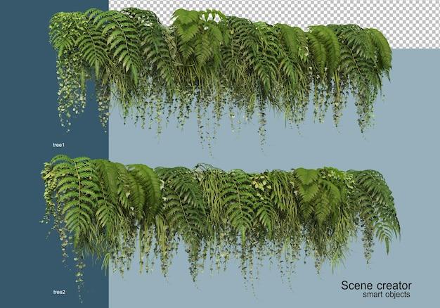 Rendering 3d di arbusti fioriti isolati