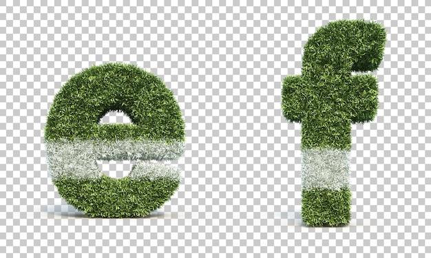 Rappresentazione 3d dell'alfabeto e del campo da gioco dell'erba e dell'alfabeto f