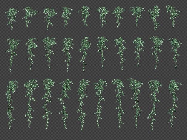 Rendering 3d di piante pensili in rendering 3d