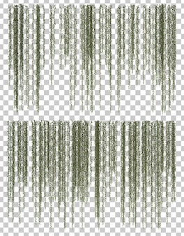 Rappresentazione 3d della pianta d'attaccatura