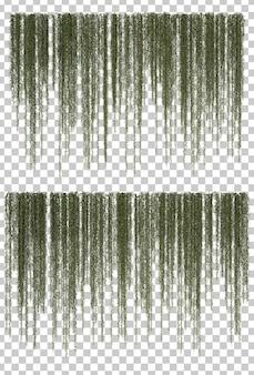 Rappresentazione 3d delle piante d'attaccatura