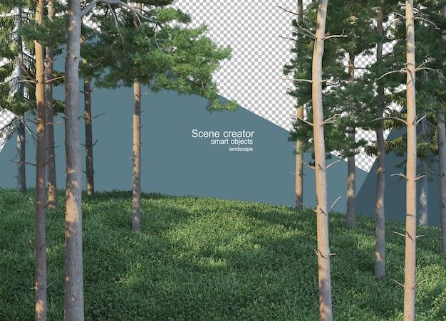 Rendering 3d di alberi di pino sul pendio erboso