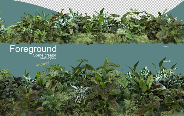 Rendering 3d di piante in primo piano