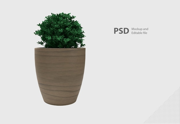 Rendering 3d di pianta in vaso isolata