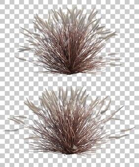 Rappresentazione 3d dell'erba di fontana viola