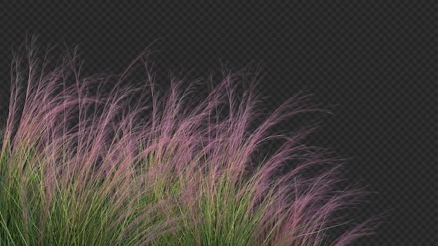 Rendering 3d di primo piano viola tre erba verde