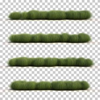 Rappresentazione 3d dell'erba del carice