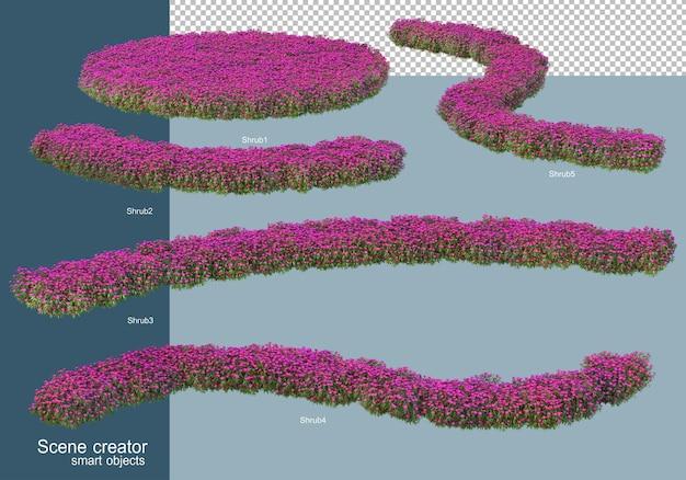 Rendering 3d della disposizione degli arbusti isolata