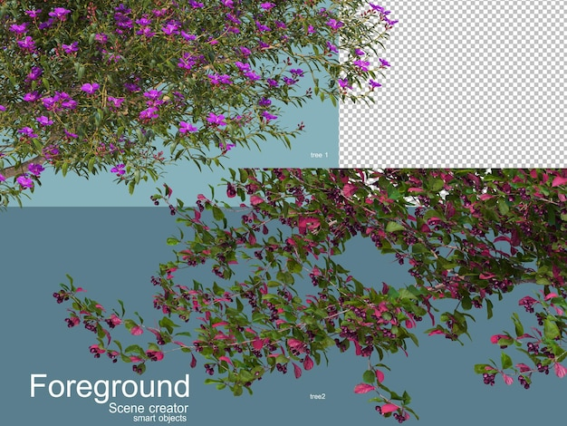 Rendering 3d di alberi foregroung isolati