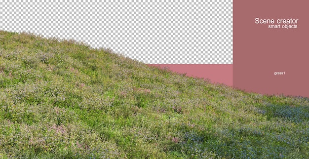 Rendering 3d di varie erbe