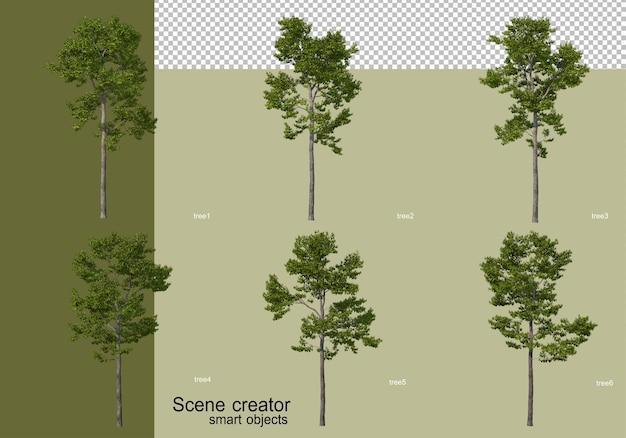 Rendering 3d di vari design ad albero isolato