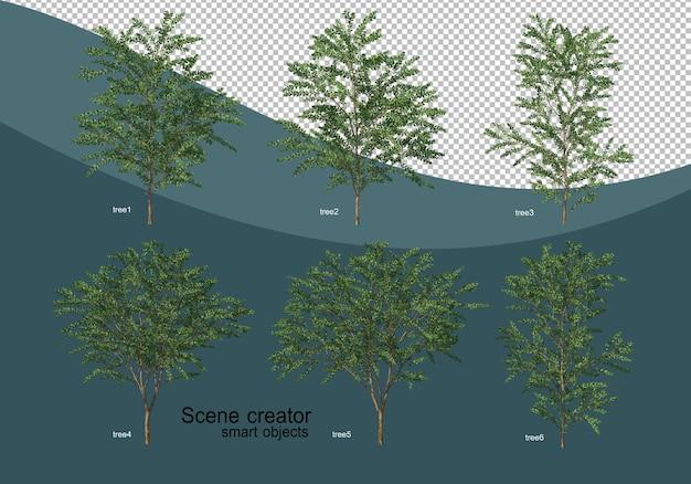 Rendering 3d di vari design ad albero