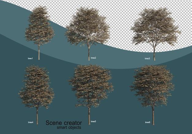 Rendering 3d di vari design ad albero Psd Premium