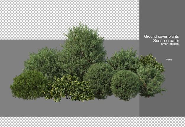 Rendering 3d di vari disegni di alberi Psd Premium