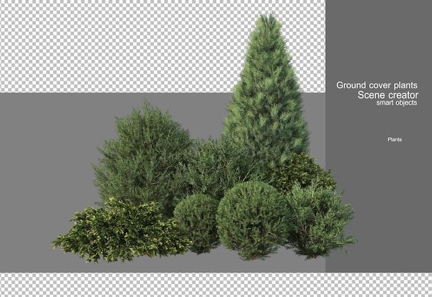 Rendering 3d di vari disegni di alberi