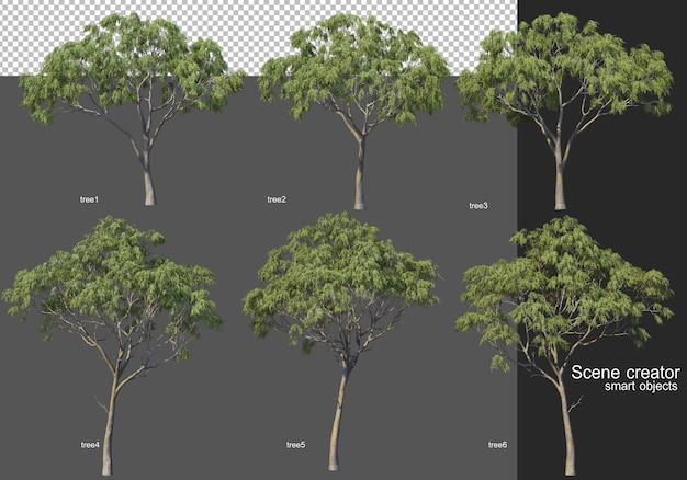 Rendering 3d, vari layout di albero