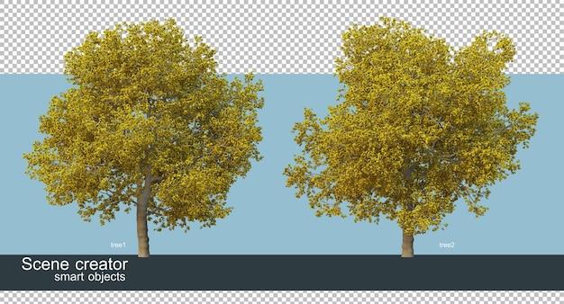 Rendering 3d di varie forme e tipi di alberi Psd Premium