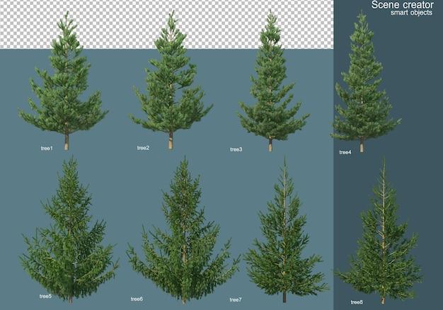 Rendering 3d di vari tipi di alberi di pino