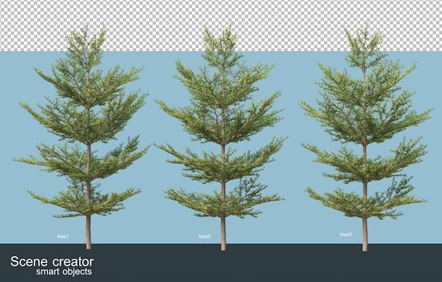 Rendering 3d vari tipi di alberi