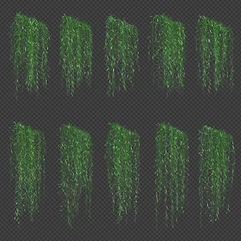 Rendering 3d dell'albero di vernonia elliptica nel rendering 3d