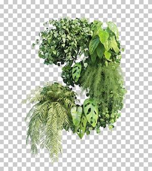 Rappresentazione 3d del giardino verticale numero 3