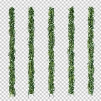 Rappresentazione 3d del giardino verticale