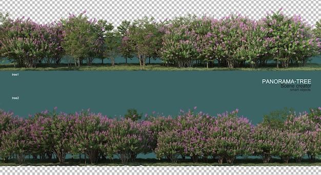 Rendering 3d di disposizione ad albero grandangolare