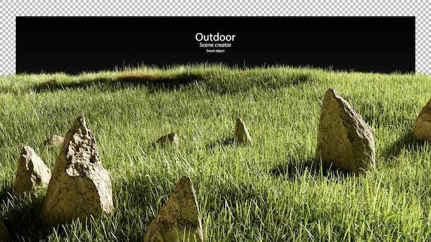Pietre 3d e campo in erba