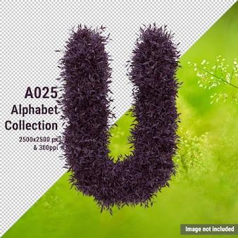 L'alfabeto lascia la lettera u